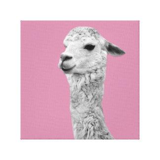 Alpaca farm animal photo nursery kids room canvas print