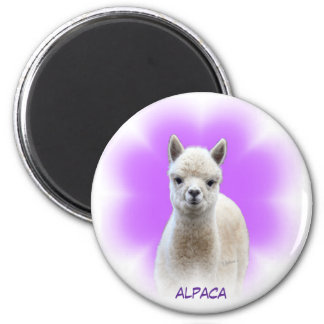 Alpaca Hope Magnet