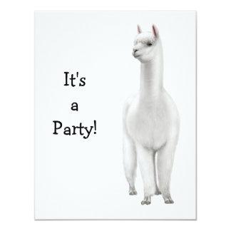 "Alpaca Invitation 4.25"" X 5.5"" Invitation Card"