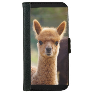 Alpaca iPhone 6 Wallet Case