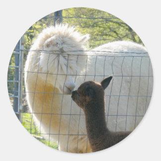 Alpaca Kisses Sticker