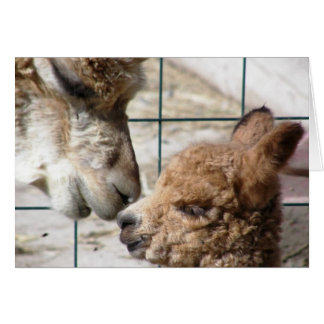 Alpaca Mom and Baby Card