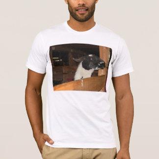 Alpaca not a LLama T-Shirt
