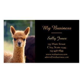 Alpaca Pet Care Business Cards Double-Sided