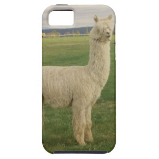 Alpaca phone case  barely there 5/5S