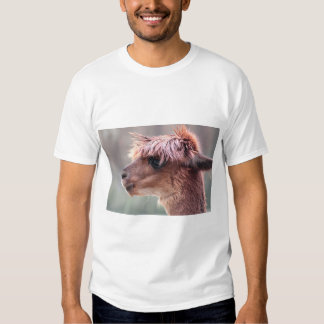 Alpaca profile tee shirt