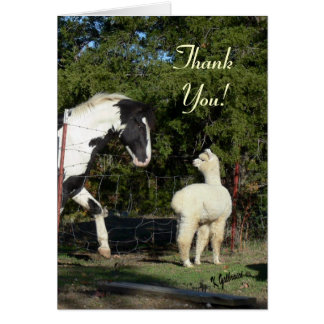 Alpaca Thank You Card