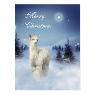 Alpaca Winter Night Christmas Postcards