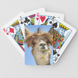 Alpaca with Crazy Hair Bicycle Playing Cards