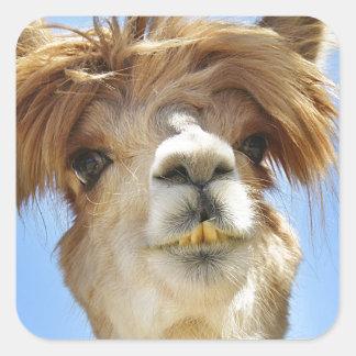 Alpaca with Crazy Hair Square Sticker