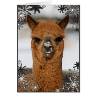 Alpaca With Snowflakes Card