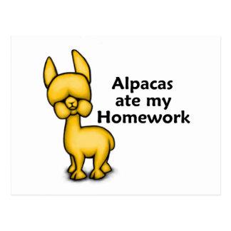 Alpacas ate my Homework Postcard