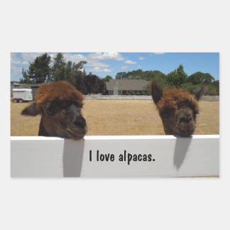 Alpacas in Templeton, California Rectangular Sticker