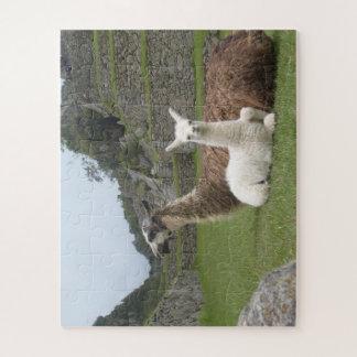 Alpacas Jigsaw Puzzle