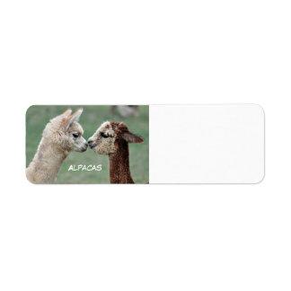 Alpacas label