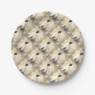 Alpaka knows 7 inch paper plate