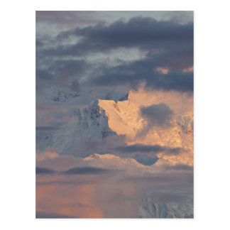Alpenglow illuminates Pioneer Ridge Postcard