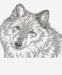 Alpha Female Wolf Gifts on Zazzle AU