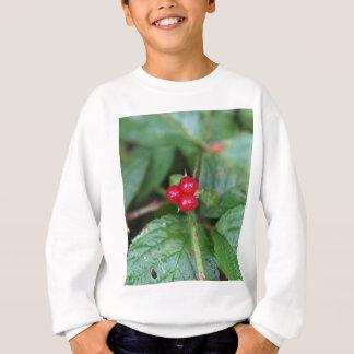 Alpine currant (Ribes alpinum) Sweatshirt