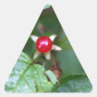 Alpine currant (Ribes alpinum) Triangle Sticker