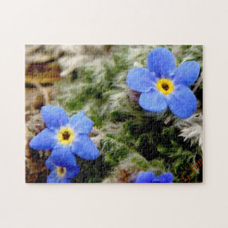 Alpine Forget-Me-Not Puzzle