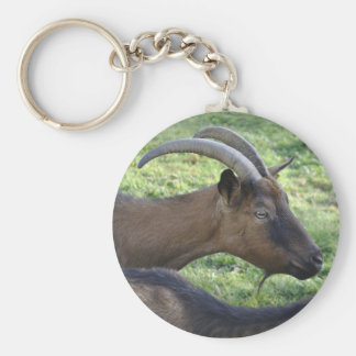 Alpine goat key ring