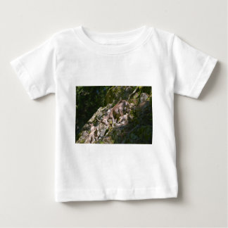 Alpine ibex in the mountain baby T-Shirt