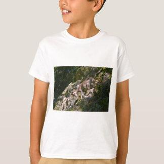 Alpine ibex in the mountain T-Shirt