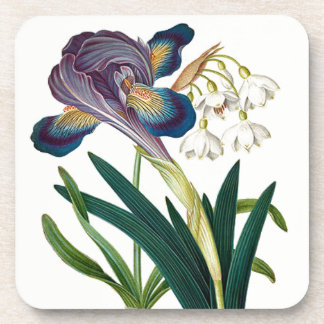 Alpine Iris Summer Snowdrop Flowers Coaster