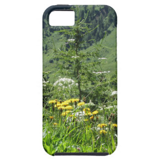 Alpine landscape with wildflowers and firs case for the iPhone 5