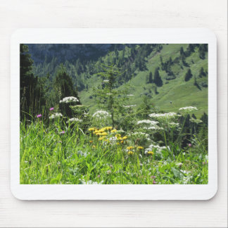 Alpine landscape with wildflowers and firs mouse pad