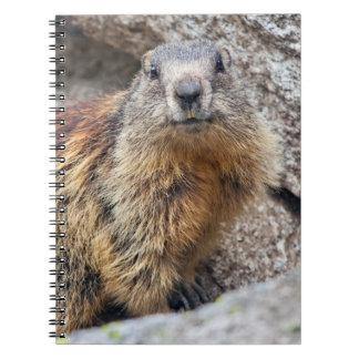 Alpine Marmot Notebook