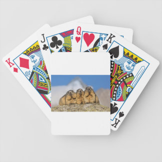 Alpine Marmots Bicycle Playing Cards