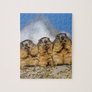 Alpine Marmots Jigsaw Puzzle
