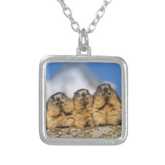 Alpine Marmots Silver Plated Necklace
