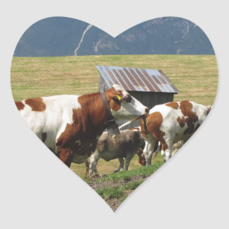 Alpine pasture with cows heart sticker