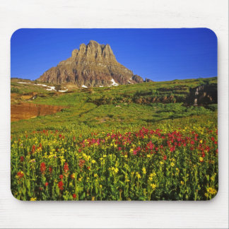 Alpine wildflowers at Logan Pass in Glacier Mouse Pad