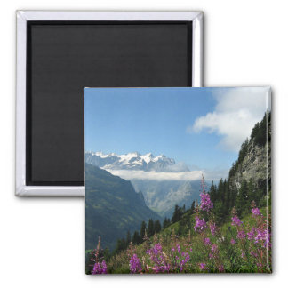 Alps, Switzerland Magnet