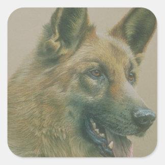 Alsation Dog Square Sticker