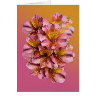 Alstroemeria Flowers  Blank Note Card