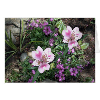 Alstroemeria Flowers Card
