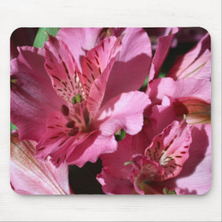 Alstroemeria Pink Flower Mouse Pad