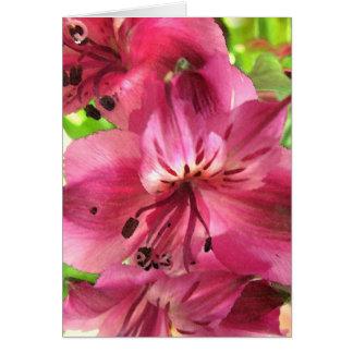 Alstroemeria Valentine Card