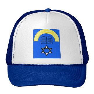 ALTER HATS