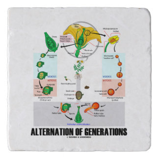 Alternation Of Generations Flower Life Cycle Trivet