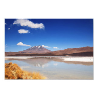 Altiplano landscape with volcano in Bolivia Photo Print