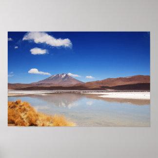 Altiplano landscape with volcano in Bolivia Poster