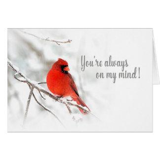 Always on my mind - Red Cardinal Snow Scene Card