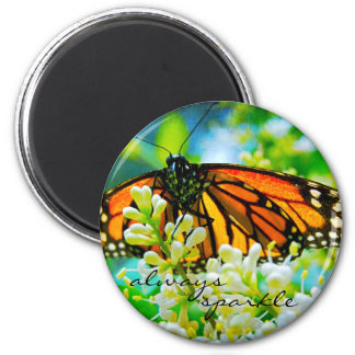 """Always sparkle"" orange monarch butterfly photo Magnet"