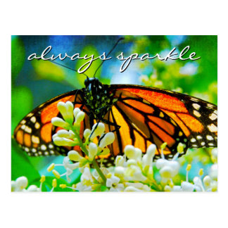 """""""Always sparkle"""" quote monarch butterfly photo Postcard"""